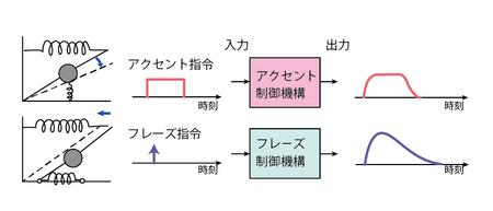 Blog_model001_4